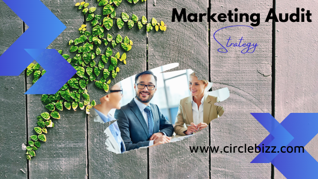 Marketing Audit Example